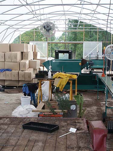 Our year-round potting operation is headquartered here.